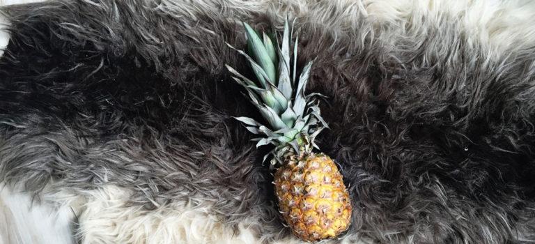 Ananas – LEBENSMITTEL sind mehr als Nahrungsmittel