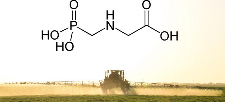 Glyphosat – Auswirkungen auf dem Darm